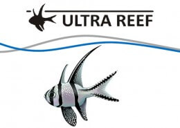 Ultra-Reef-Portofolio